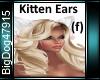 [BD]KittenEars (f)
