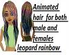 Oto's Rainbow  leopard H