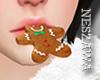 NZ!! Gingerbread Xmas!!