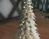 (S) Yule Dec Tree