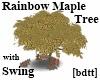 [bdtt]Rainbow Maple Tree