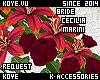 |< Cecilia! Bouquet!