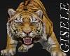 PET TIGER W/TRIGGERS