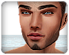 Terrence Head Derivable
