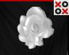 White Rose Hair Clip - R