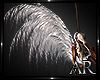 Angel Wings White Deriva