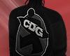 CDG X STUSSY