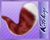 K!t  - Amity Tail