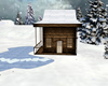 small winter house