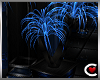Blue Danube Plant I