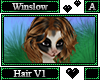 Winslow Hair A V1