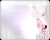 [Nish] Bouquet Scent