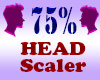 Resizer 75% Head