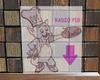 LXF Radio pig