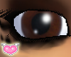 [FC Model Eyes-chocolate