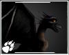 WS ~ Black Dragon Ani