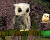 Who Me? The lovable owl