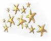 Submerged Golden Stars