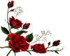 Red Roses Bottom -L