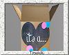 gender reveal box.