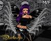 Fairy Wing Black