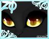 Zhaw | Eyes
