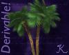 Tropical, Fan Palms