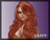 Ulaluma Ginger