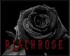 BlackRose Boots