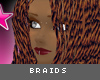 [V4NY] Braids Rame