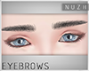 [\] #M.04-1 Eyebrows