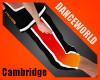 Cambridge Academy BBShrt