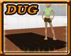 (D) Floor Board Rug