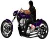 Purple Harley