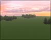 Open sunset field