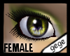 [GG]Female Eyes 3