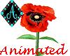 Ama{Poppies animated