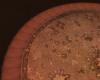 Antique Rug Round