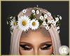 £. Flower Crown