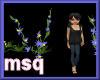 FloweringWildIvy3