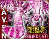 (F) CHESHIRE CAT BUNDLE!