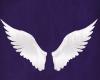 Unicorn wings Decor