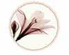 Crea Rugs Flower 2