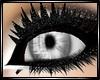 !I Silver Eye's