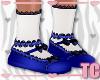 Blue Floral Kid Shoes