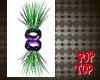 Purple Fantasy plant