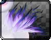 🤘 Eos Smoke| Shoulder