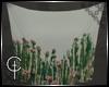 [CVT] Tapestry Cactus