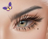 K. Terri Eyebrows