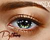 | Skyline Eyes